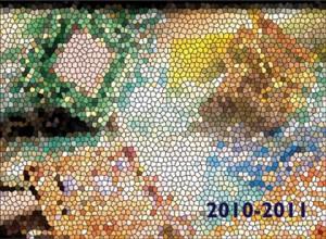 2010-2011 Card